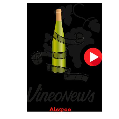 Vineonews
