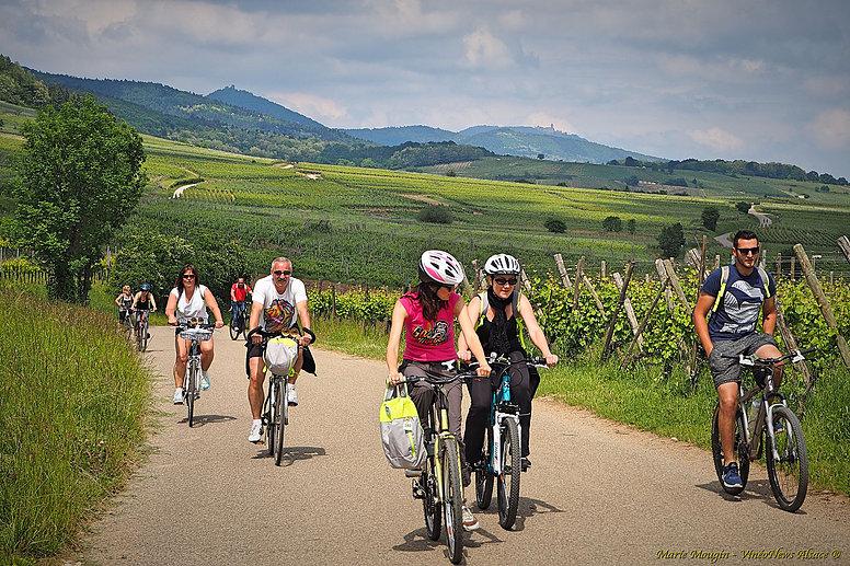 1er Vélo Vino Tour