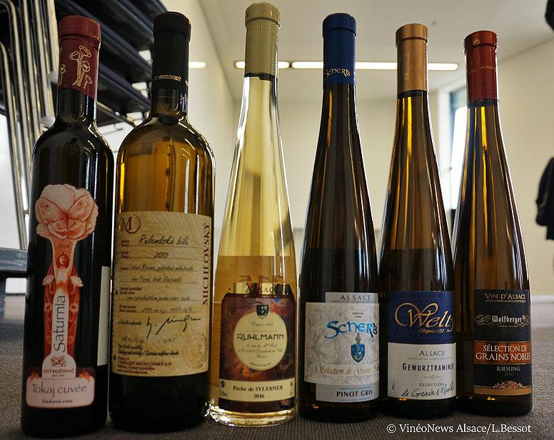 Concours des Grands Vins Blancs du Monde, l'Alsace reste une référence
