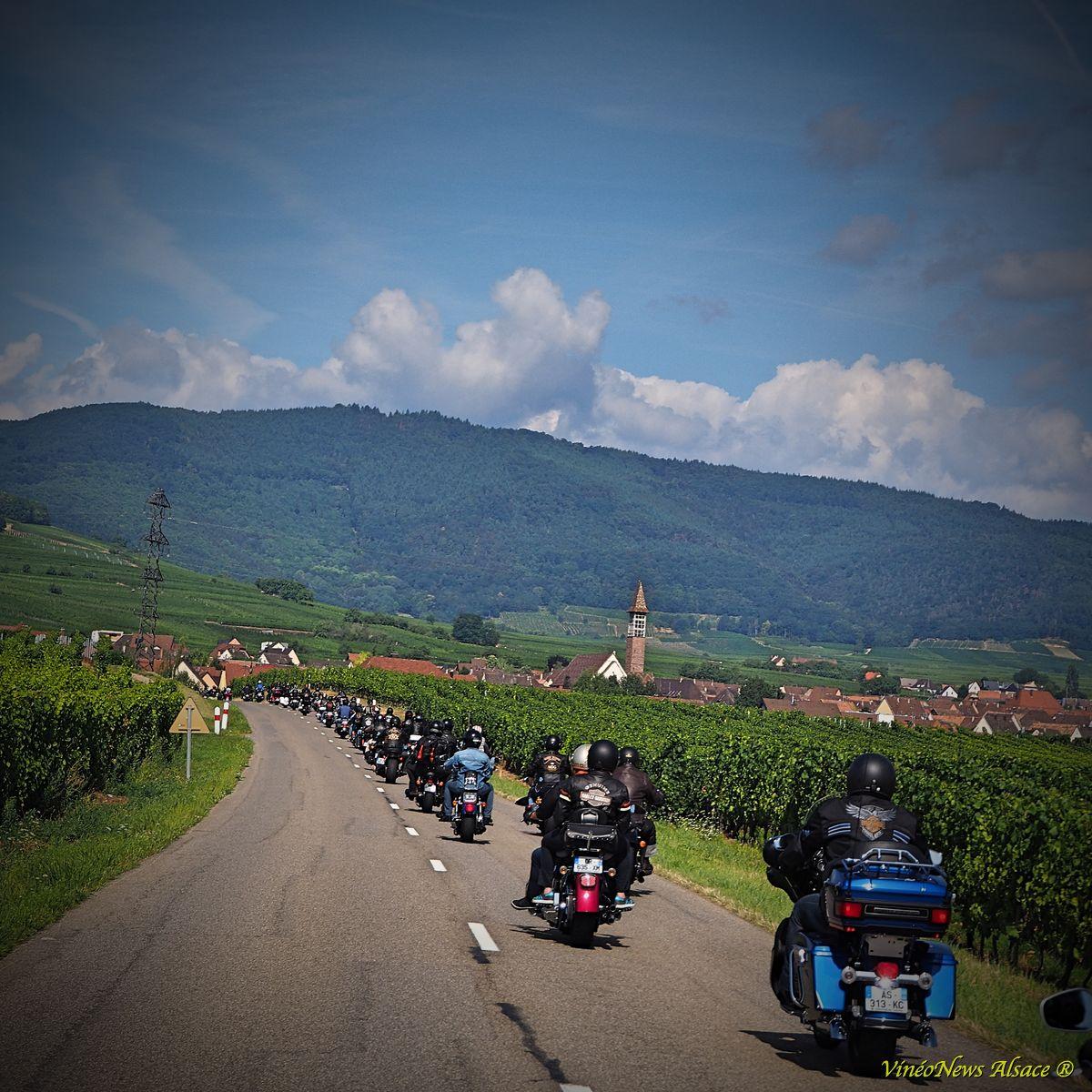 Harley-Davidson… et Vins d'Alsace !