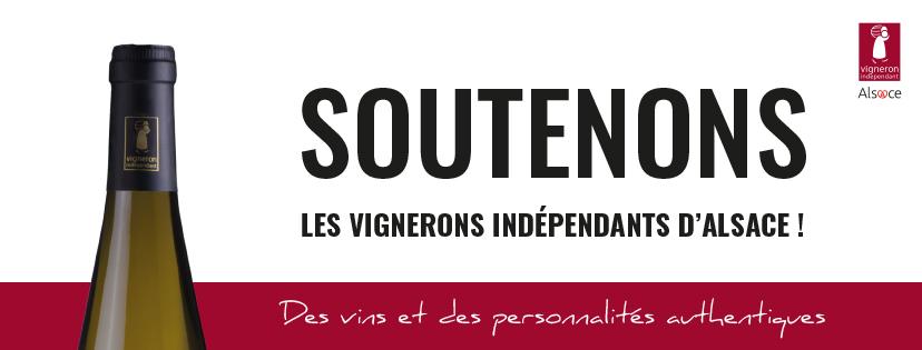 Les Vignerons Indépendants d'Alsace accueillent le public après le COVID19