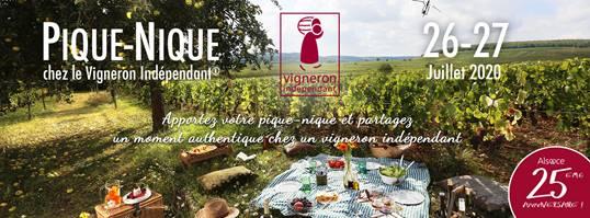 Programme oenotouristique estival des Vignerons Indépendant d'Alsace