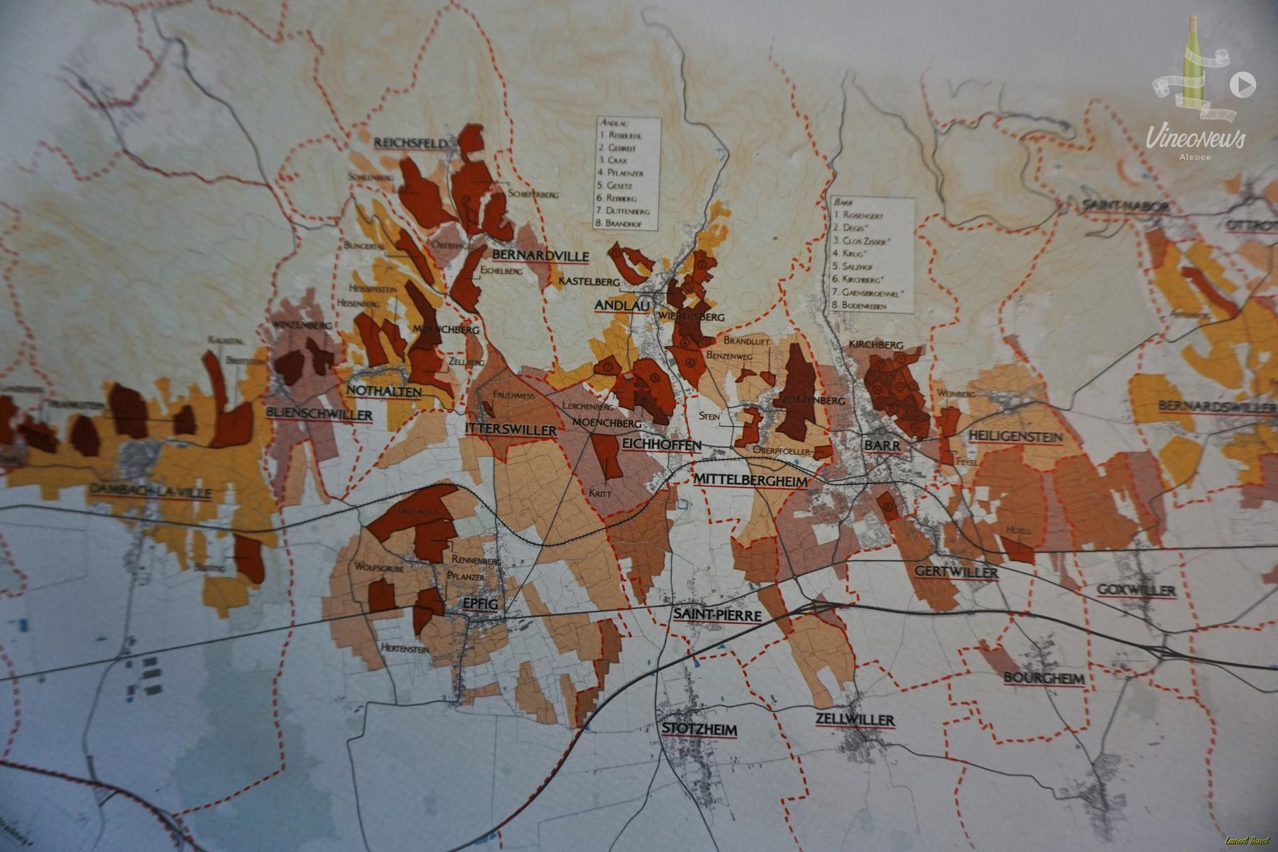 Les jeunes vignerons indépendants cartographient les terroirs alsaciens