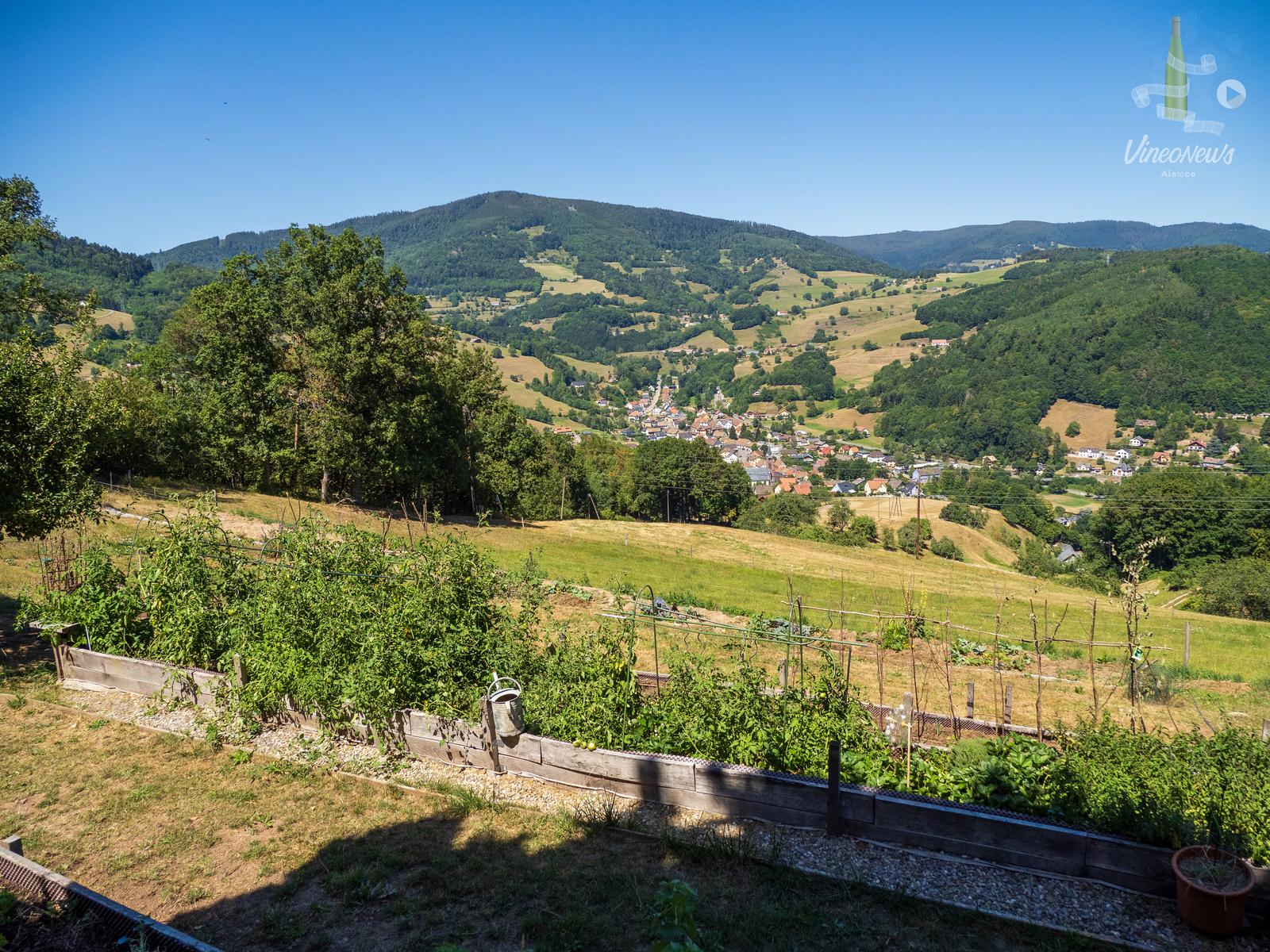 Escapade dans la Vallée de Kaysersberg #4
