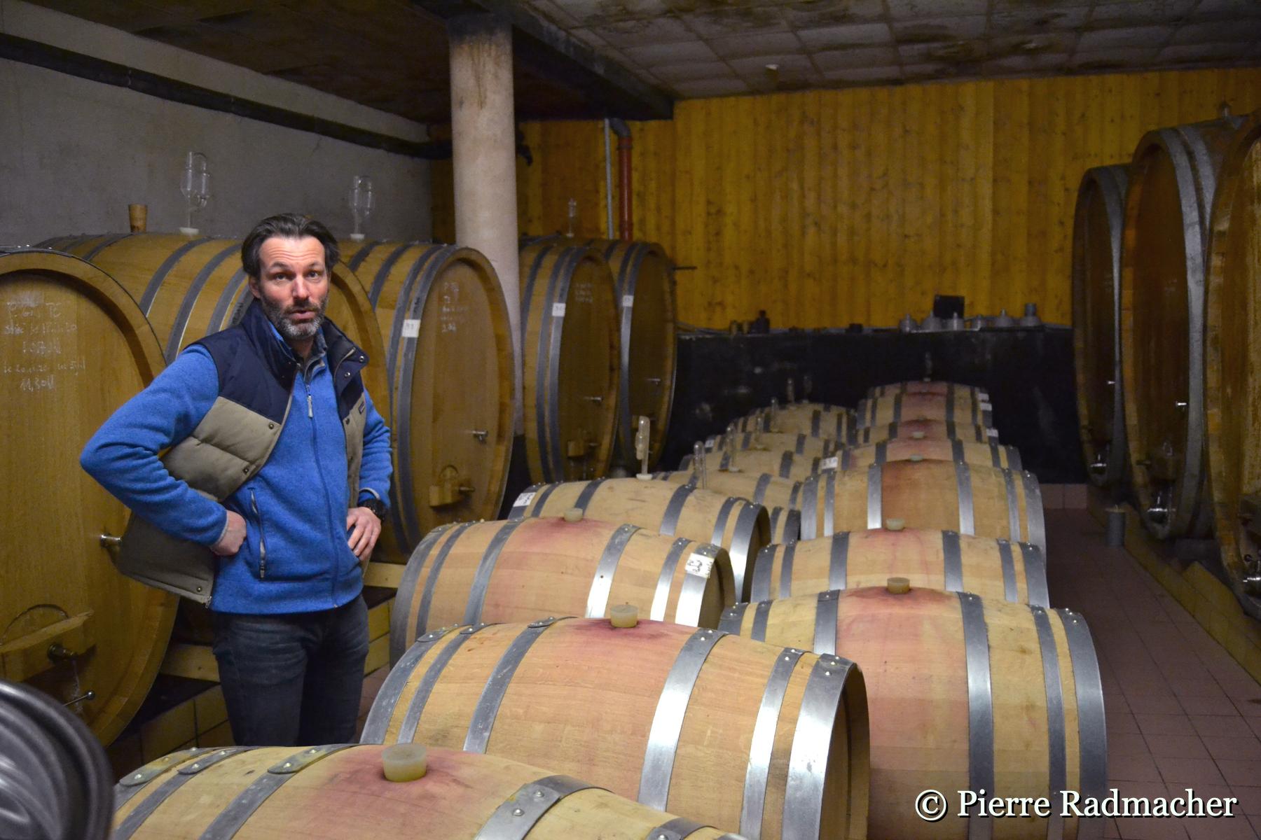 Les Grands Pinots Noirs d'Eguisheim… Domaine Zinck