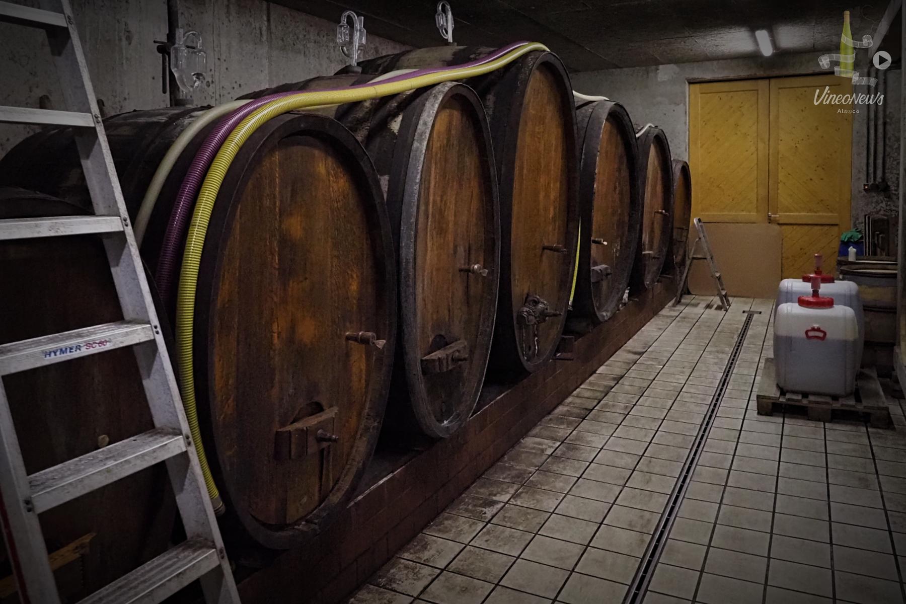 Les Grands Pinots Noirs d'Eguisheim… Domaine Paul Gaschy