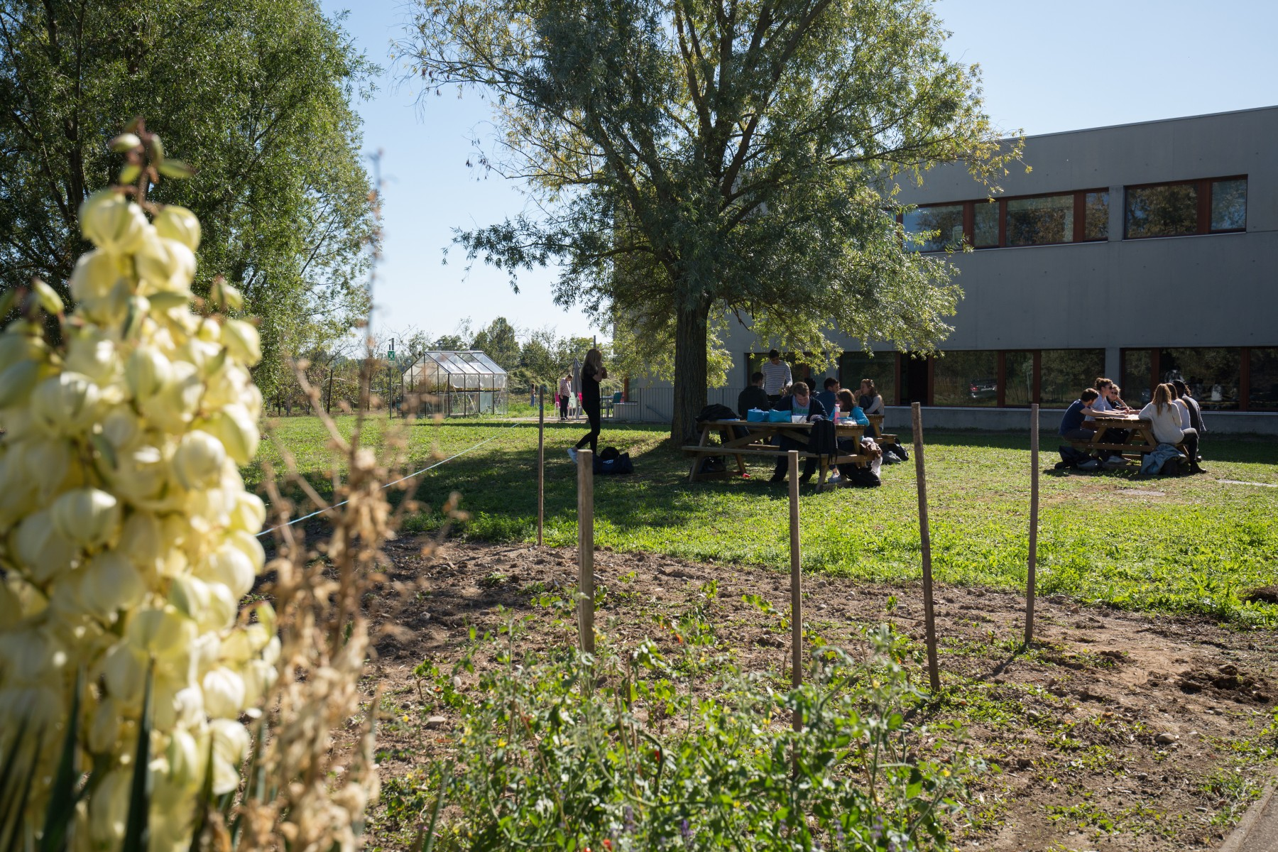 Le Master Franco-Allemand Viticulture et Œnologie: une formation d'avenir dans une filière ancestrale