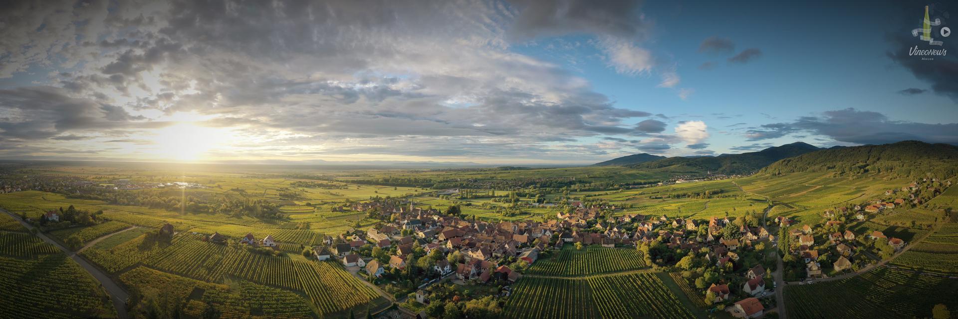 Rendez-vous des vignerons Bio d'Alsace
